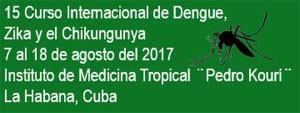 15 edición del Curso Internacional de Dengue, Zika y el Chikungunya. Vea los detalles