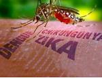 Tomar medidas para protegerse contra dengue, zika y chikungunya