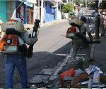 Priorizan en Holguín acciones de prevención contra el Aedes aegypti