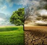 Los efectos del calentamiento global