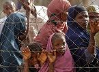 Cólera y pobreza una combinación letal en África