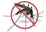 eliminar mosquito