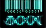 Bioinformática y genoma