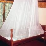 mosquiteros