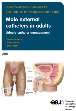 Male external