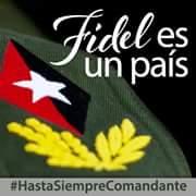 comandante insignia
