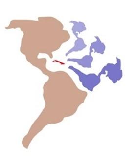 Logo del Coloquio Enfermería sin letras