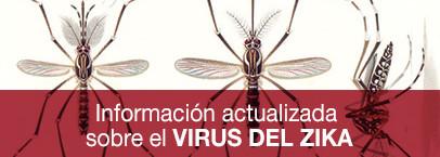 zika-406x145