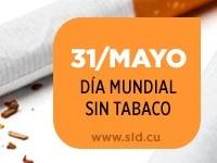 dm sin tabaco 6