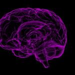 cerebrovascular_brain-1787622_1280