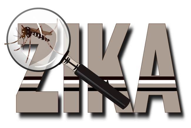 Vigilancia del Zika