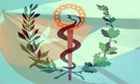 sistema de salud cuba